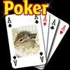 Poker38690