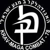 Krav-Maga-Fight