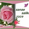 sa-na2010