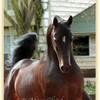 gwen-piix-chevaux-43