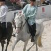 Equestriia-x3