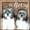 Betsy-land