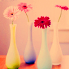 best-blog-2009