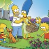 Simpson-academy