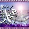 nour-el-salam