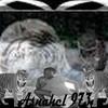 asnadu973