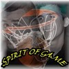 spirit-of-game