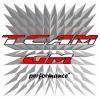 TeamGM-performance