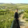 Algerrois