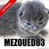 mezoued83