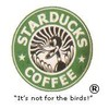 Starducks-coffee