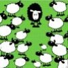 x-green-0-sheep-x