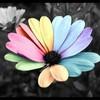 fairy-color-powa