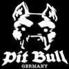 pit-bull08090