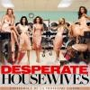 dhousewives-soul