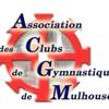 gym-acgm
