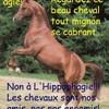 hippophagieno01