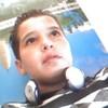 lamin2010