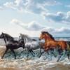 galaxie-chevaux