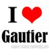 GauTierx3