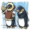 naturalpinguins