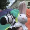 gay-zebro-x-bugs