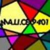 malice9401