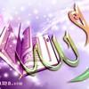 islam959