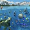 mon-aquarium-a-moi