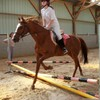 equitation-76