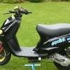 nini-zip-polini-68