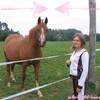 w0rld-0f-horses