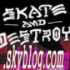 skate-and-destroyy