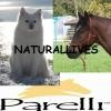 naturallives