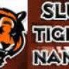 foot-US-tigres