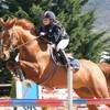 moua-mes-chevaux