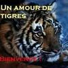 tigron0101