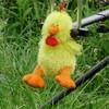 pouletcarpiste