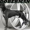 doberman-Officiels