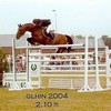 lovehorses003