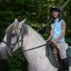 chevaux73