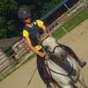 Horse-pii-Xx