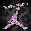 shady-taoufik