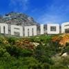 mamida91