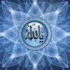 wahrani3193831