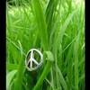 peace29love