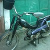 motobecannedecocodu35