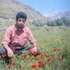 mouhamed844