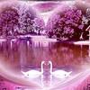 lover08