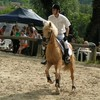 one-horse-rider